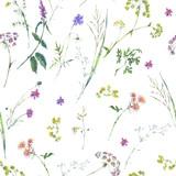 Watercolor summer wildflowers seamless pattern - 220381187