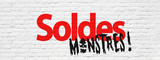 Soldes monstres - 220384962