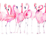 Watercolor seamless pattern with exotic flamingo. Summer decoration print for wrapping, wallpaper, fabric - 220423545