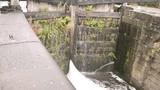 Canal locks gushing water - 220424503