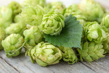 Fresh green hop on a wooden table - 220457579