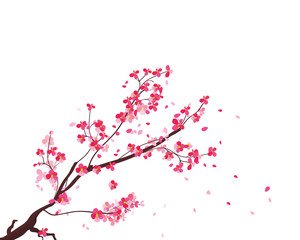 Watercolor sakura frame. Background with blossom cherry tree branches. Hand drawn japanese flowers background