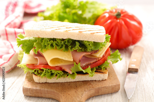 sandwich with cheese and tomato - 220490523