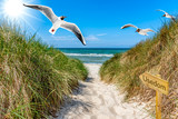Weg zum Strand - Schild Usedom - 220546549