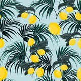 Beautiful seamless vector floral summer pattern background with tropical palm leaves and lemons. Perfect for wallpapers, web page backgrounds, surface textures, textile. Blue background. - 220549118