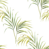 Watercolor illustration of coconut palm leaves, seamless pattern on white background - 220601177
