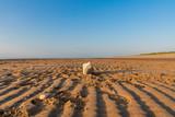 A stone on an empty beach on the Welsh coast near Prestatyn, Denbighshire, Wales - 220606388