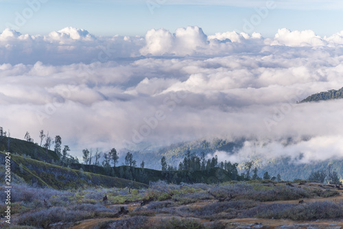 Sea of clouds below the beautiful landscape in the kawah ijen