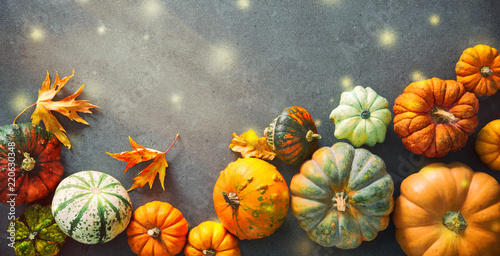 Leinwanddruck Bild Thanksgiving background with various pumpkins, gourds and falling leaves