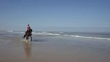 jolie cavalière au trot (slow motion) - 220645153