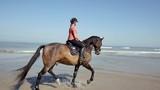 jolie cavalière au trot (slow motion) - 220645304