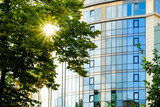 Reflection of the sun in the facade Windows. Rays through the leaves of the tree. - 220648924