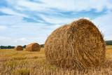 haystacks in summer field, beautiful landscape - 220671148