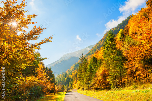 Leinwanddruck Bild Road in autumn mountains, Alps, Austria. Beautiful autumn landscape
