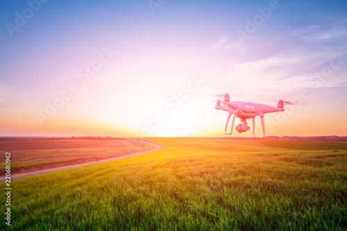 Foto Murales drone quad copter on yellow corn field