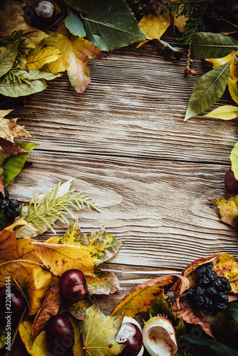 Fototapeta Autumn wooden background with maple leaves with copy space