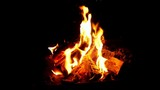 Slow motion of fire at bonfire in the dark - 220715958