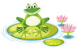 Happy frog on lily pad