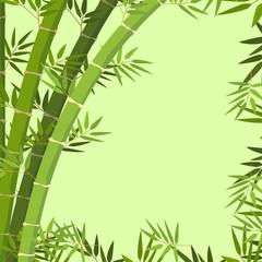 A green bamboo border © brgfx