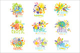 Exotic, summer travel set of logo graphic templates - 220748579