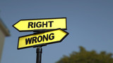 A road sign with right wrong words . 3d image. - 220757500