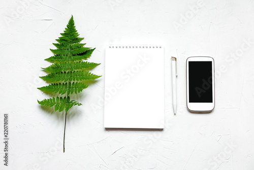 A branch of fern and a notebook on white, high key