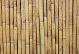 Bamboo produce and wall background