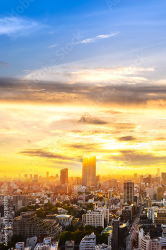 cityscape of tokyo city sunset skyline in Aerial view with skyscraper, modern business office building with yellow gold sky background in Tokyo metropolis city, Japan. - 220819118