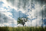 Single tree on imaginative meadow landscape with wooden boards texture background. Retro color tone effect used. - 220825525