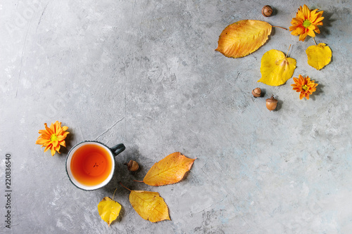 Fototapeta Cup of hot tea decorated by yellow autumn leaves, aster flowers and acorns over grey texture background. Flat lay, space. Seasonal background.