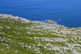 Cantabria, Liendo municipality - 220842973