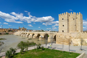 Puente romano de Córdoba, Andalucía, España © danillaophoto