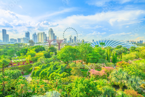 Aerial view of cityscape Singapore and gardens by the bay. Famous tourist attraction in marina bay area, Singapore.