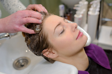 hairdresser washing a customers hair © auremar