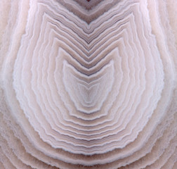 complex curled light agate design background