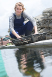 female working at an oyster farm - 220964188