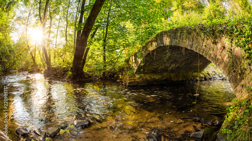 Leinwandbild Motiv Old bridge over a creek in the forest with bright sun in the background