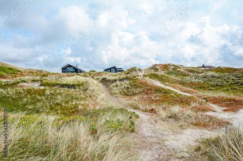 Leinwandbild Motiv Dune landscape at the North Sea with holiday homes near Henne Strand, Jutland Denmark Scandinavia