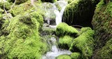 Beautiful sunny mossy rocks with stream. Dolly slider equipment used. - 221021744