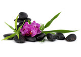 Zen pebbles and orchid flower. Stone spa and healthcare concept. - 221034526