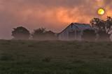 Foggy Sunrsie - 221044176