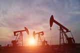 The oil pump - 221051929