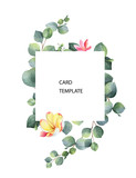 Watercolor vector card template design with eucalyptus leaves and flowers. - 221076963
