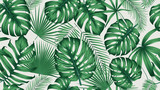Trendy seamless tropical pattern with exotic leaves and plants jungle - 221092190