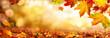 Leinwanddruck Bild - Bunte Blätter im Herbst verzieren einen breiten unscharfen Hintergrund im Wald
