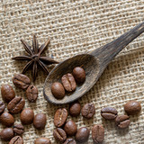 roasted coffee in a wooden spoon on canvas - 221124500