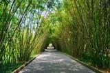 Wangjianglou park. Chengdu, Sichuan, China - 221126130