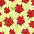 Beautiful seamless floral pattern background decorated with red flowers.