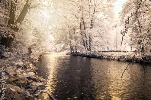 zimny-krajobraz-zimowy-w-riverside