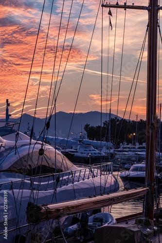 Alpes-Maritimes (06) Cannes - 221169391